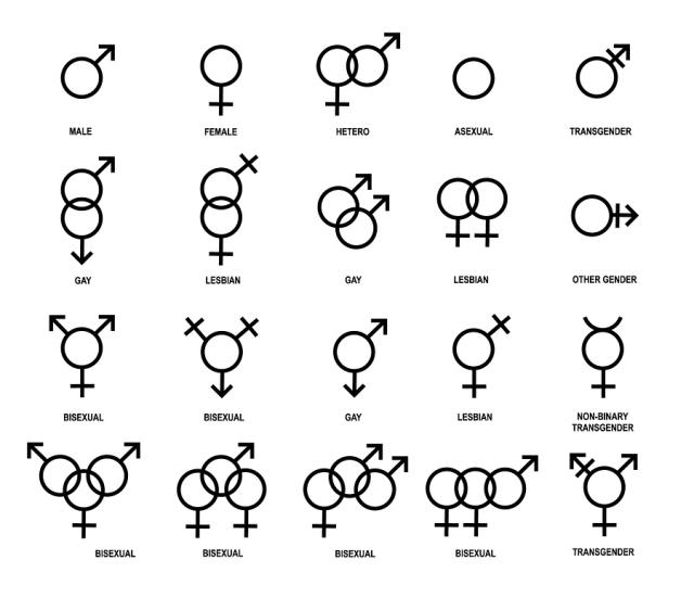 Vector outlines icons of gender symbols. Male, female and transgender symbols.